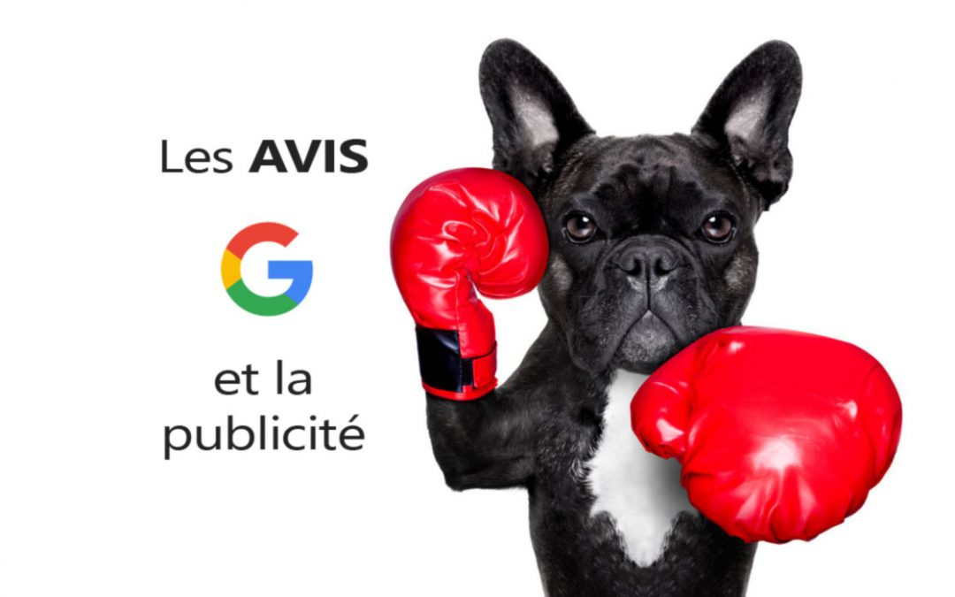 Visibilité des avis Google VS la publicité